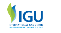 LNG Cleans Up Air in Port Cities: IGU