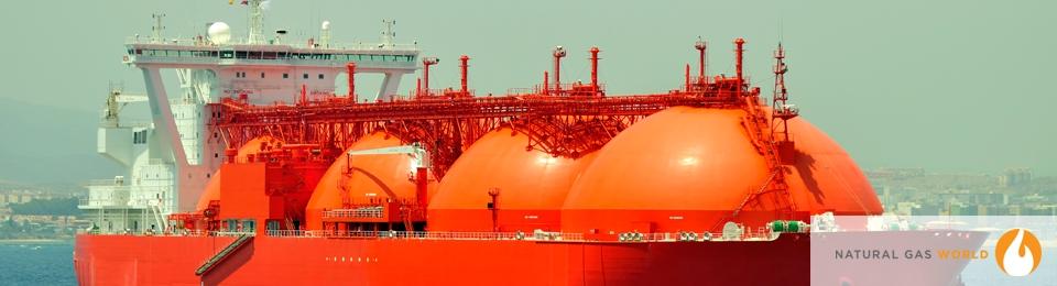 India's January LNG Imports Drop 15%
