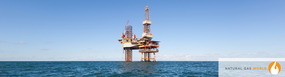 US Gulf Lease Sale Shows 'Industry Optimism'