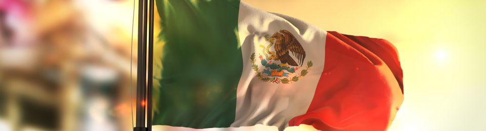 Mexican Gas Industry Faces Rocky Road - Regulator