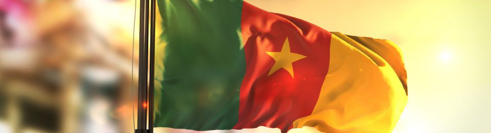 Cameroon Producer Sees Demand Up