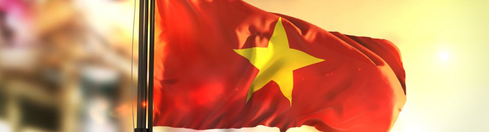 Singapore's Delta Offshore to Build Power Plant in Vietnam