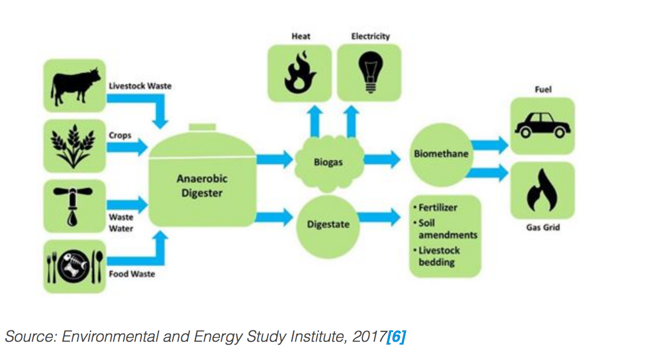 GGP] What is renewable gas? - Natural Gas & LNG News - Natural Gas World