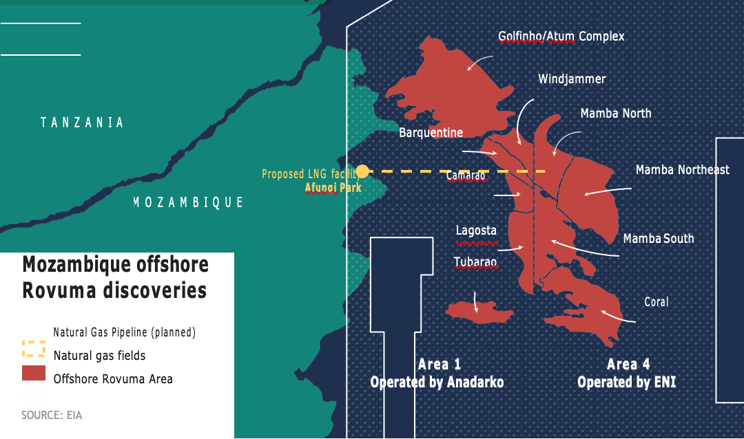 Pivotal year for Mozambique's LNG ambitions [LNG Condensed]